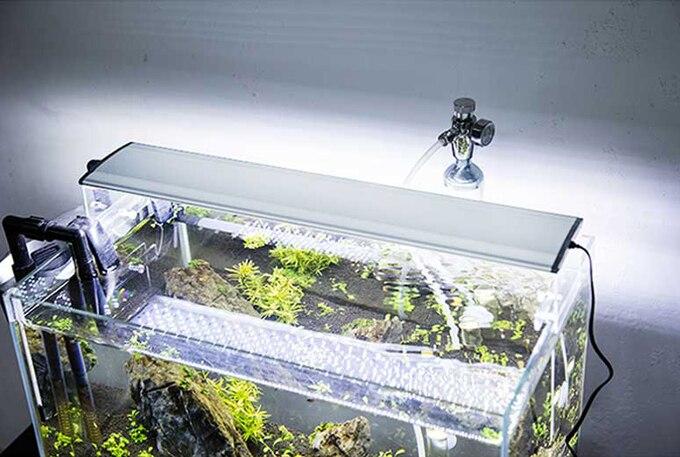 led lighting for planted aquarium | Roselawnlutheran
