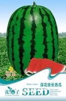 Fruit seeds Deep pattern long watermelon Green skin red pulp Watermelon seeds 6 grains / package
