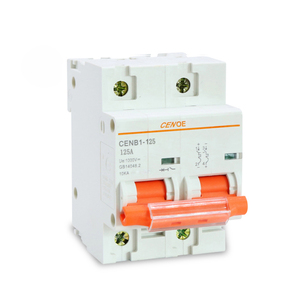 Image 5 - most ideal 2p 1000V 63A 80A 100A 125A photovoltaic dc circuit breaker for protection solar power system important components