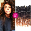 9A Malaysian Virgin Hair Curly Weave Human Hair 3 Bundles Ombre Hair Extensions Deep Curly Weave 1B/4/30 Ombre Hair