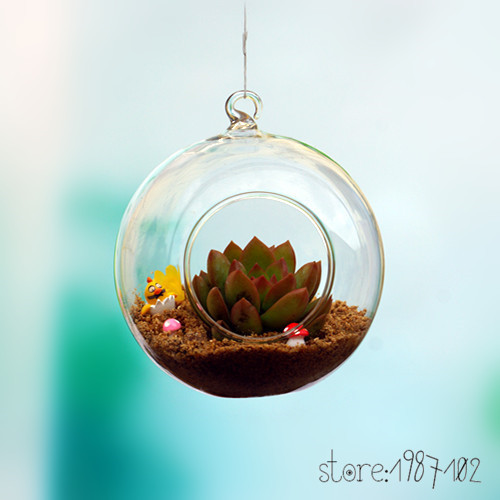 6pcs Glass Terrarium Ball Globe Shape Clear Hanging Vase Flower Air