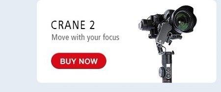 Crane2-1