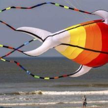 Cerf volant воздушные змеи для взрослых cometa windsock Осьминог Кайт koinobori sot игрушки для детей ripstop большой надувной змей животное 3d