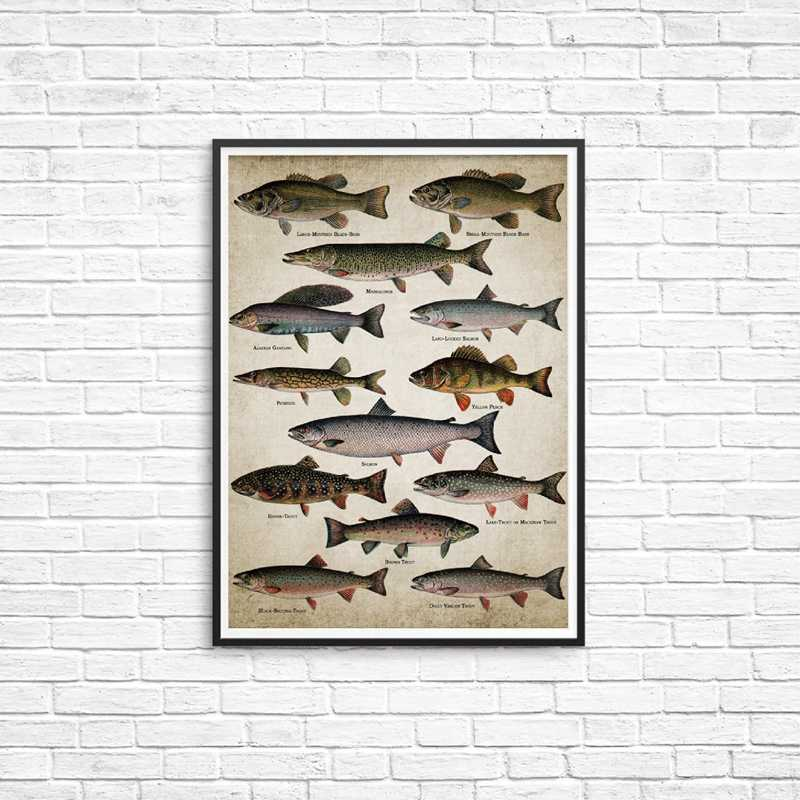 Fishing Angling Wall Art Canvas Posters Prints Breeds Of Fish Painting Freshwater Fish Wall Picture for Home Room Decoration