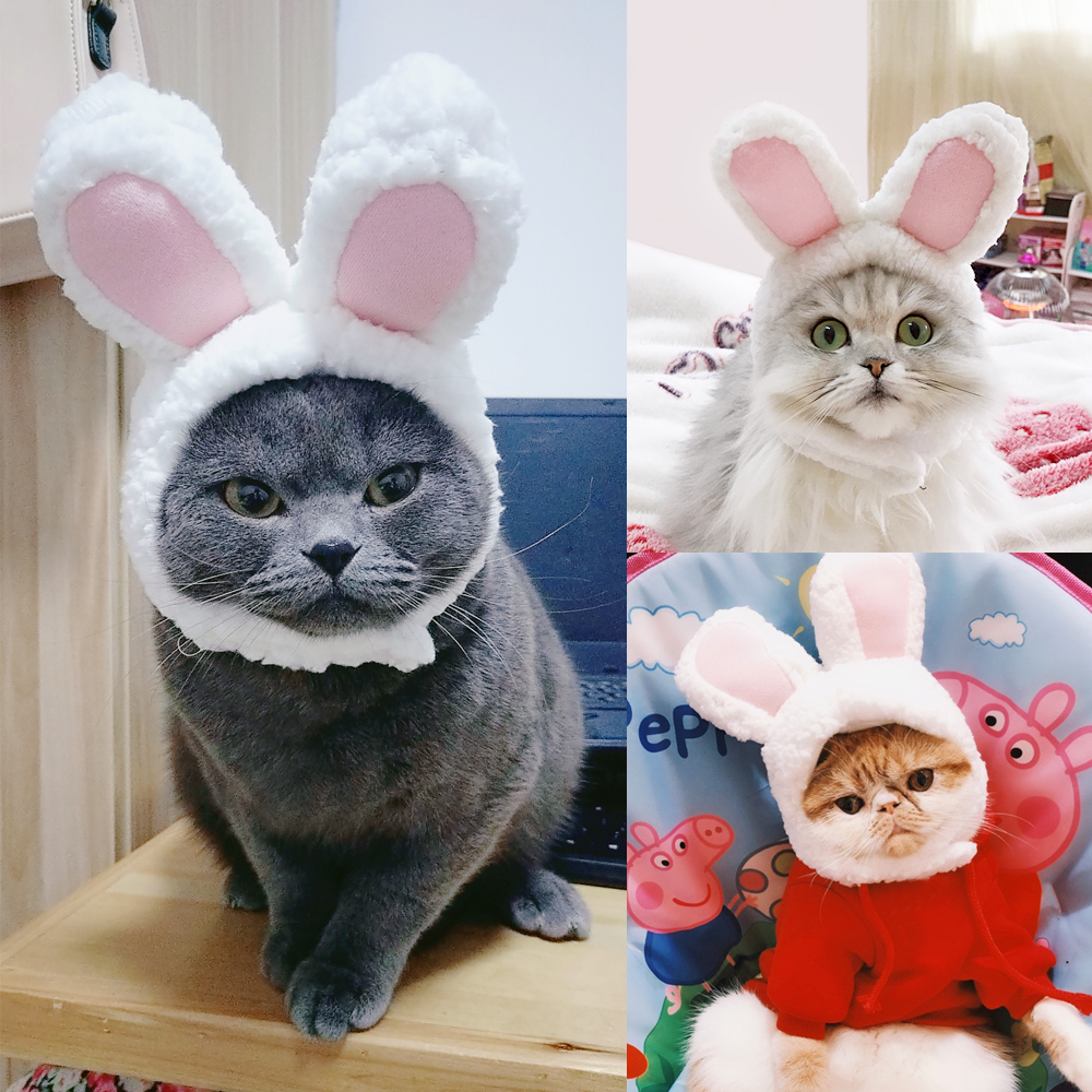 Funny Dog Cat Hat Cute Rabbit Ear Headgear For Puppy Kitten Small Dogs Cats Hats Headwear Pet Accessories Photo Props