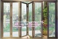 North America Australia Europe standard luxury royal thermal break double glass,Exterior Aluminum Alloy Frame Design For Kitchen