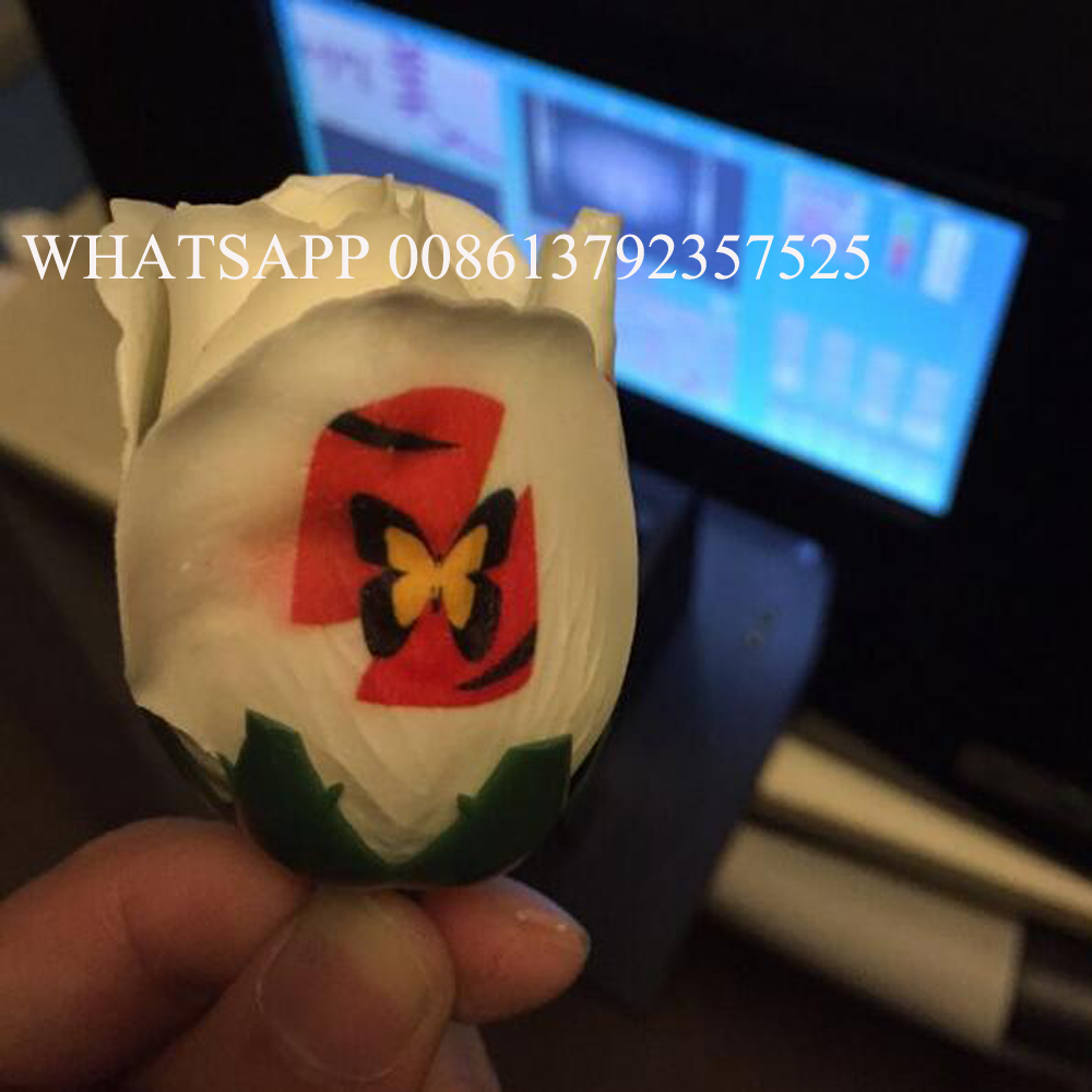 flower printer Free shipping touchable screen build inside digital nail and flower printer flower printing machine