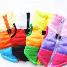 Polyester Taff Casual Dog Clothes