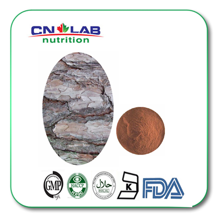 ФОТО Factory supply 100% Natural Pine Bark Extract Proanthocyanidins(OPC) 95% 1000g with best price