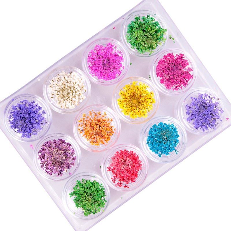 12jar Sale Natural dried flowers 3D Rhinestone & Decoration Pearl for Nail art Decorations DIY Nails Accessoires 100pcs 6 color choices resin flowers nail art decoration diy charm 3d unha nails accessories bl59