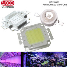 High Power Royal Blue LED Aquarium Grow Chip 440nm 450nm 3W 5W 10W 20W 30W 50W 100W COB LED Emitter Bulb for DIY LED Grow Light(China)