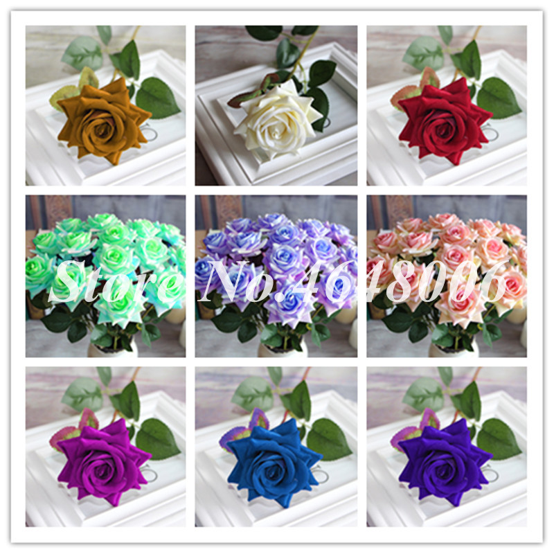 200 Pcs Home Chinese Rose Plants Perennial Rainbow Fence Shed Roses Flowers Fragrant Climbing Seedsplant For Garden De Flores