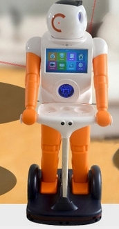 Intelligent Welcome Service Home Robot Can Set The Welcome Language Arbitrarily Robot