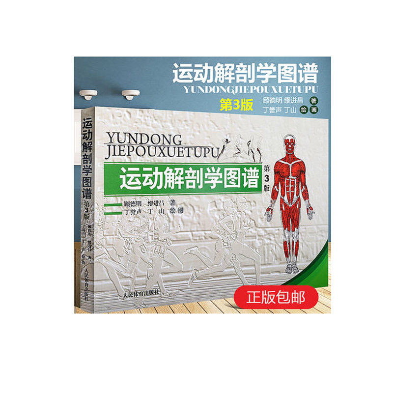 Online-Shop 3D Menschlichen Anatomie Buch: Body muscle anatomie und ...