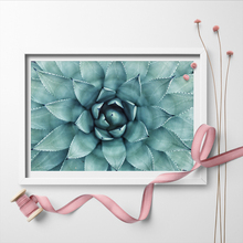 Nordic Green Cactus Leaf Posters And Prints Wall Art Canvas Painting Plant Picture For Yoga Room Unframed