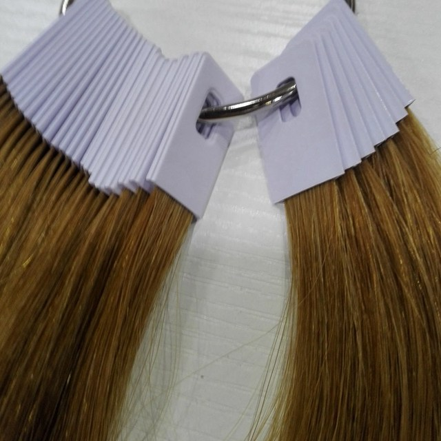 8 Inch Human Hair Color Ring For Salon Hair Color Chart Light Brown