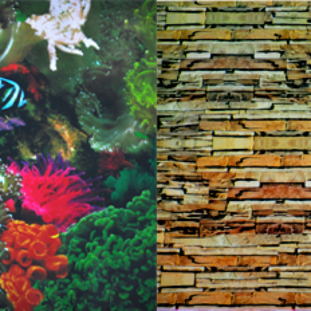 HEIGHT 30 40 50 60CM WATERPROOF Aquarium Fish Tank Decoration Background ROOT Wallpaper