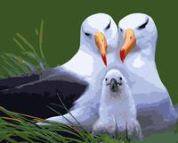 MaHuaf-j429 Albatross Family coloring by numbers on canvas hand painted cuadros picture painting for wall decor