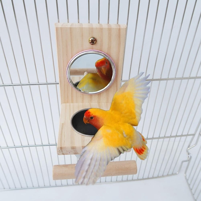 Wooden Bird Feeding Mirror Stainless Steel Food Bowl Feeder Combination Parrot Stand Bird Toy Cup Perches Bird Cage Station Ra 1