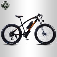 Love Freedom 24 speed Mountain Bike Electric Bicycle 36V 350W 10.4Ah 26X4.0 powerful electric Fat bike free delivery