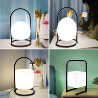 Hand Held Ball/Egg/Cylinder/Cube RGB LED Nightlight Home 16 Color Decor Table Lamps Baby Room Bedroom Dimmable Sleeping Light