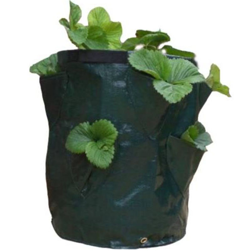 Online Get Cheap Plastic Bag Gardening Aliexpresscom Alibaba Group