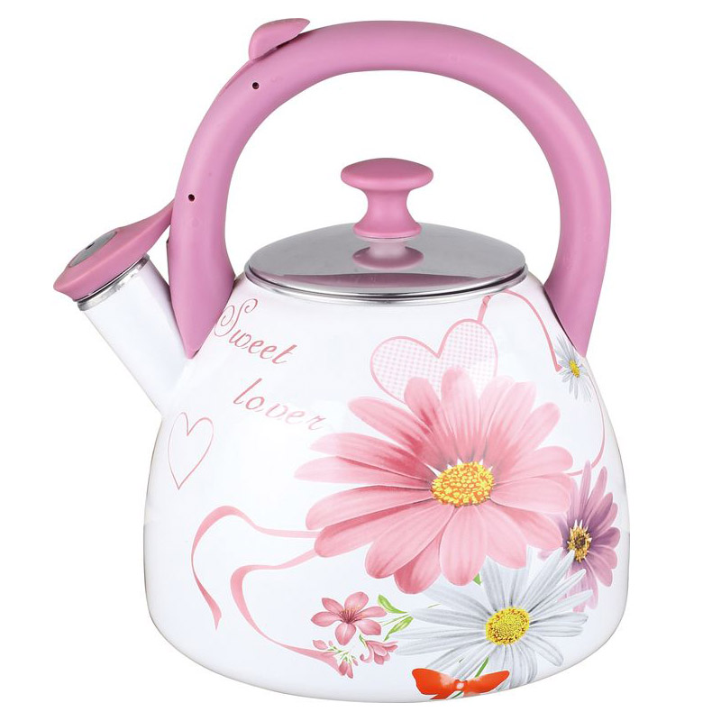 Kettle Чудесница ЭЧ-3004 (Volume 3 L stainless steel, suitable for all types of plates) acacia 1633301 outdoor double layer heat preservation stainless steel kettle silver 750ml