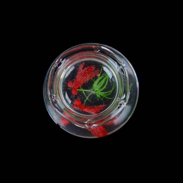 1:12 Puppenhaus Zubehör Miniatur Glas Aquarium Aquarium Puppe Ornament /_T