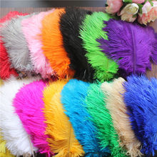 50 - PCS full natural ostrich feather embellished with feathered feather decoration/20-25cm faux feather embellished solid tee