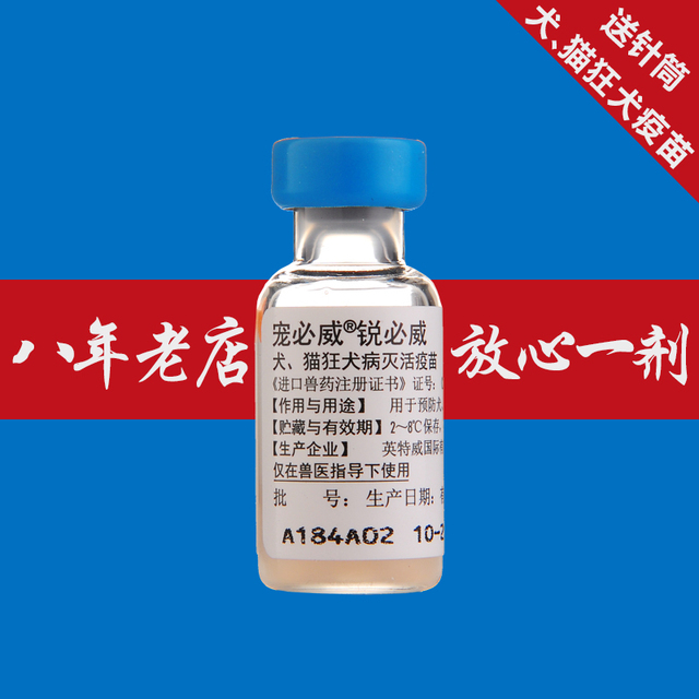 US $53 75 |Cheap Netherlands Intervet rabies vaccine delivery syringe Pet  dogs and cats immunized generic medicines insulation distribution trong