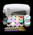 BTT-120 free shipping PRO FULL Nail Art Set 9W UV GEL White Lamp 12 Color Pure UV GEL Brush