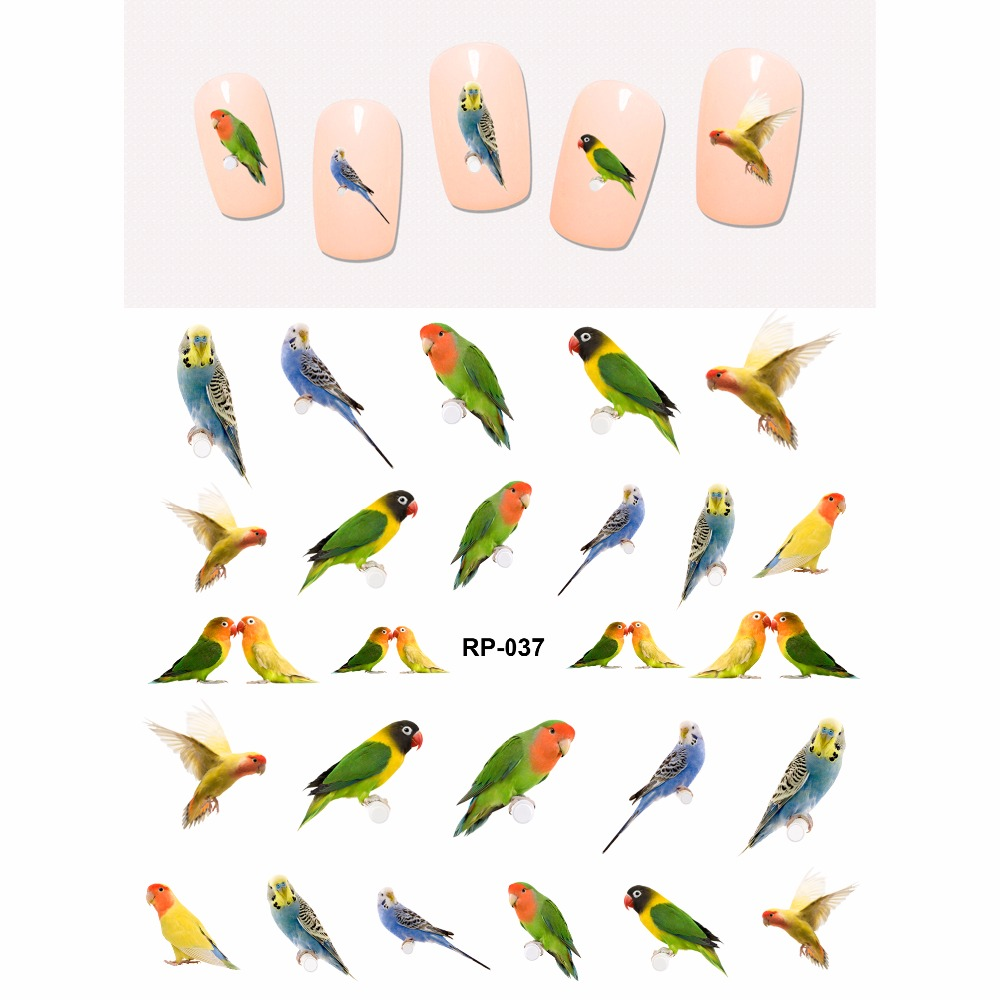 NAIL ART BEAUTY NAIL STICKER WATER DECAL SLIDER BIRDS TEAL GROUSE WOODPECKER PARROT PARAKEET RP037 042