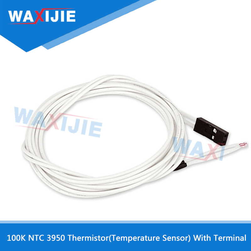 20inch Thermal Sensor Cable 2Pin 2 Pcs