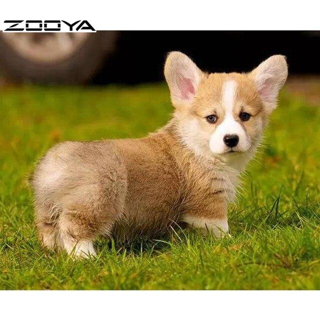 Zooya 2017 Vendite Calde Diy Pittura Diamante Pembroke Welsh Corgi Cane Cute Pet Ricamo A Punto