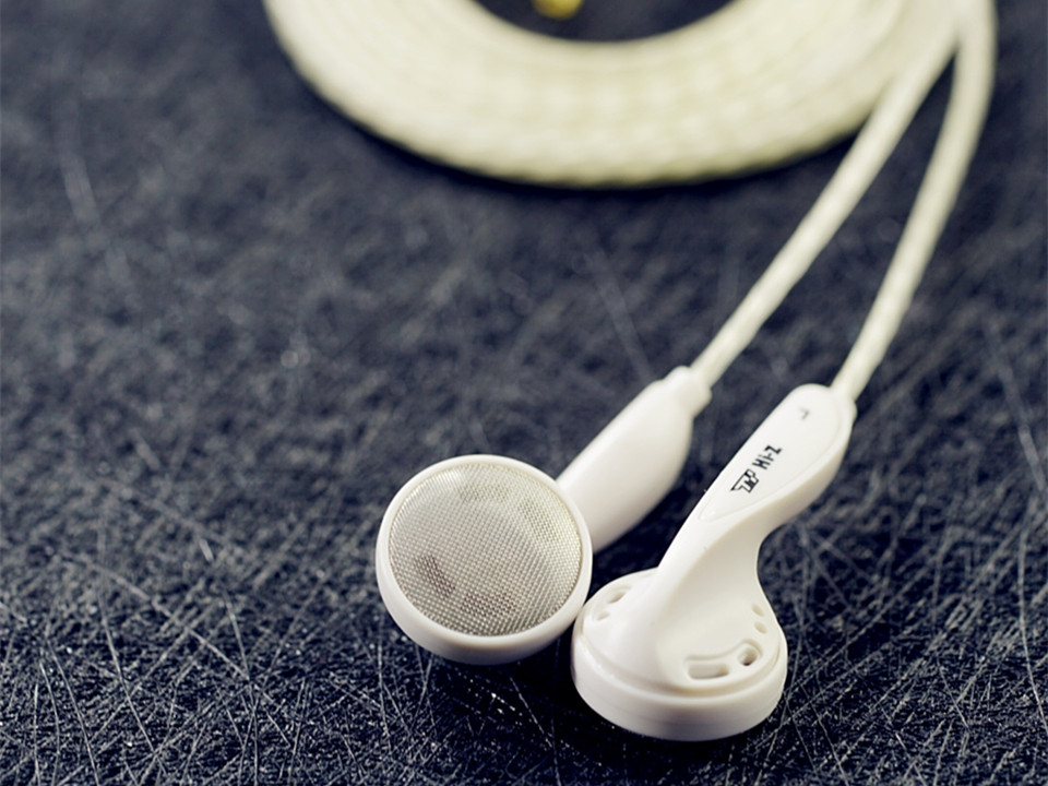 TY Hi-Z 314 300ohm High Impedance Silver-plated Cable HiFi Earbuds Flat-Head Earphone