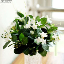 ZLKING 20 PCS Very Fragrant Pure White Jasmine Seeds Bonsai Ornamental Fragrant Flowers Perfume Raw Materials Famous Tea(China)
