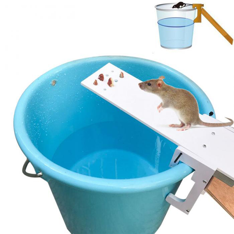 HOT Home Garden Pest Controller Rat Trap Quick Kill Seesaw Mouse Catcher Bait-in Traps from Home & Garden