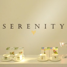 Creative serenity quote wall decor living room background vinyl sticker home  ZY8249