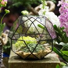 Europe Triangular Pentagon Mix 32-Sides Artistic Glass Geometric Terrarium Desktop Succulent Fern Moss Planter Bonsai Flower Pot