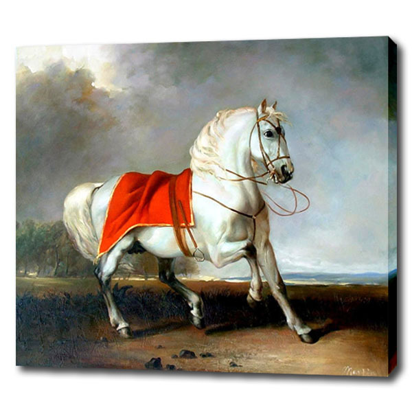 Beautiful White Horse Oil Painting For Friends Unique Gift Modern Rhaliexpress: Horse Paintings For Living Room At Home Improvement Advice