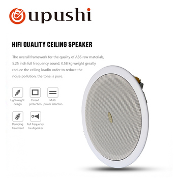PA System TD202 6.5 Inch Ceiling Speaker Best Sales With Hifi Quality For Store Shop Restaurant In Wall Speakers