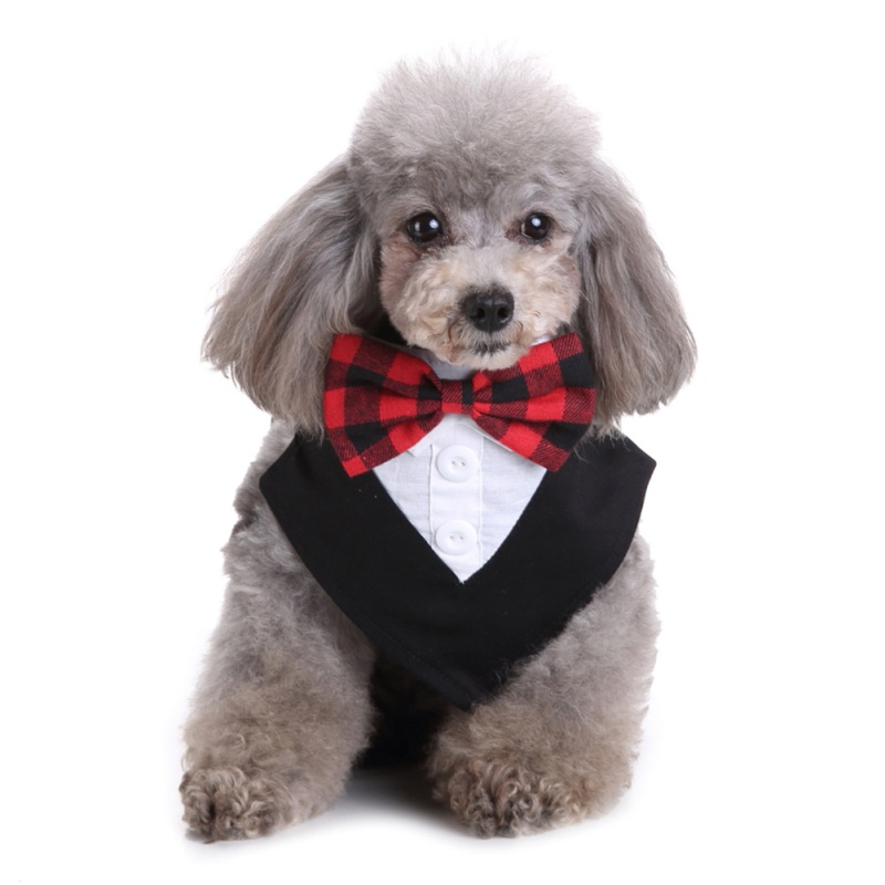 2018 Pet Suit Puppy Dog Detachable Collar Cats Dogs Scarf Bib With Bow Tie Cotton Pet Grooming Collar For Small Dogs Clothes