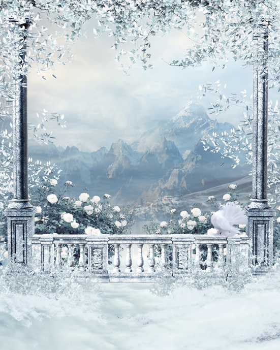 Custom Photo Studio Backgrounds Snow Christmas Castle