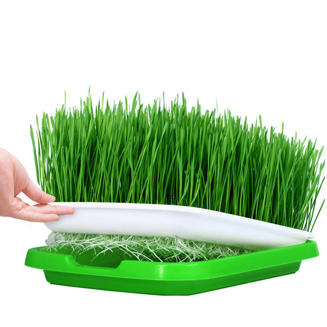 5-set Double-layer Seed Sprouter Tray Hydroponics Basket Seeding Germination Tray - Green + White