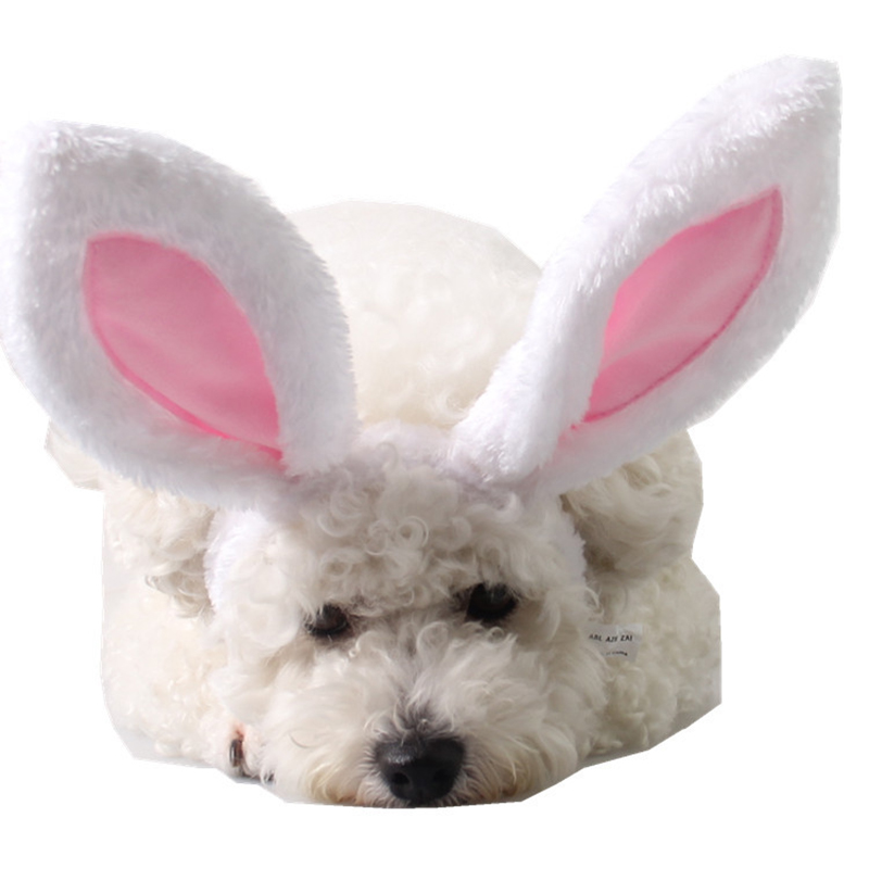Lovely Pet Grooming Accessories Products Dog Rabbit Ear