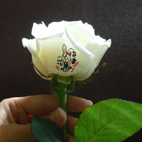 Fleurs imprimante 3 fleurs impression un temps