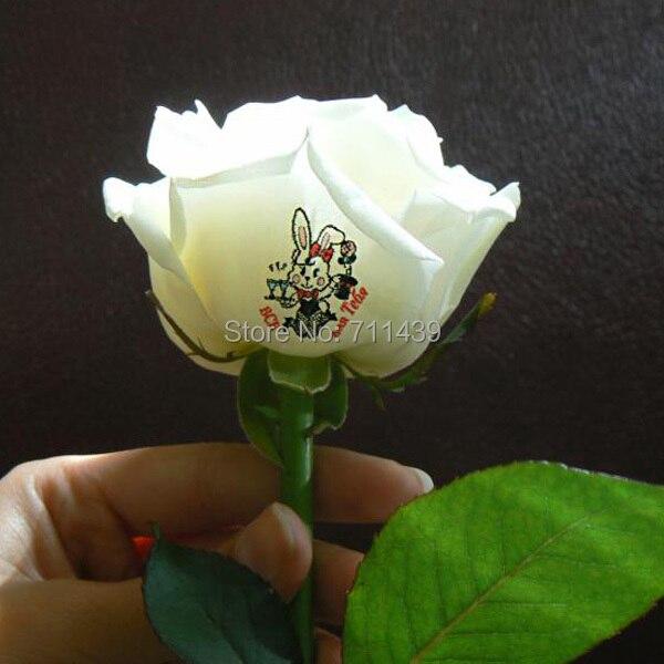 Stampa fiori 3 fiori stampa di un tempo