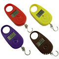 Hanging Scale Mini Digital Hanging Luggage Scale LCD Display Electronic Fishing Weighing Weight Balance Scales 25kg x 5g