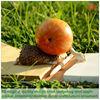 ED original quality design resin hedgehog with apple garden ornament /desktop decor craft /nature ornament/ Valentine's Day gift