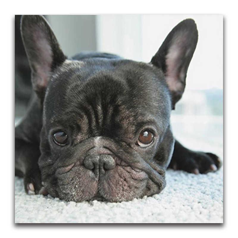5D Diy ภาพวาดเพชร Cross Stitch สีดำขนาดเล็กสุนัขหัวเพชรเต็มรูปแบบภาษาฝรั่งเศส bulldog รอบเพชรโมเสคลูกสุนัข